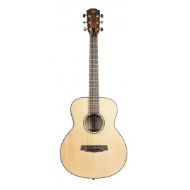 BB29SP Travel Acoustic Guitar + Guitar cover Prodipe Guitars JM Forest JMFBB29SP
