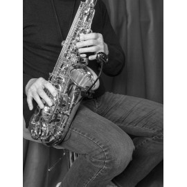 Micro instrument SB21 Lanen Sax, Brass Prodipe