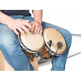 DL21 Salmiéri Drums Instrumentenmikrofone Prodipe